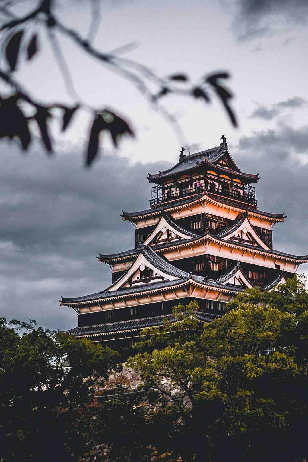 Comment protéger érable japonais du froid ?