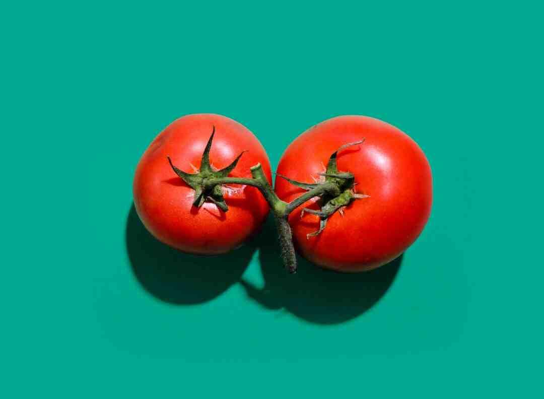 Quelle profondeur de terre pour planter des tomates ?