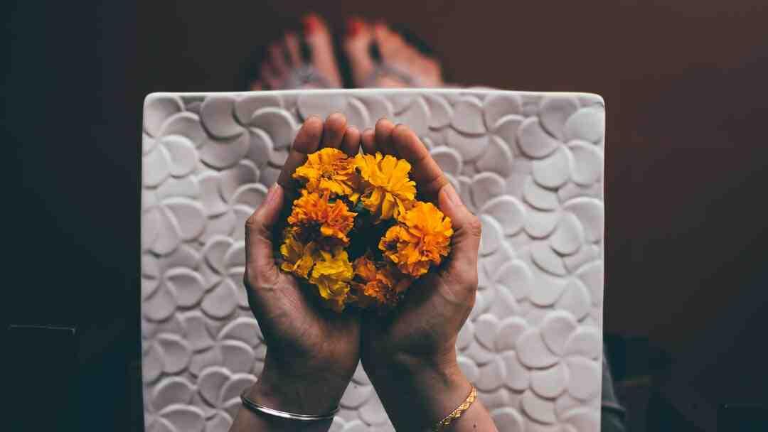 Comment faire pour que les fleurs coupées tiennent plus longtemps