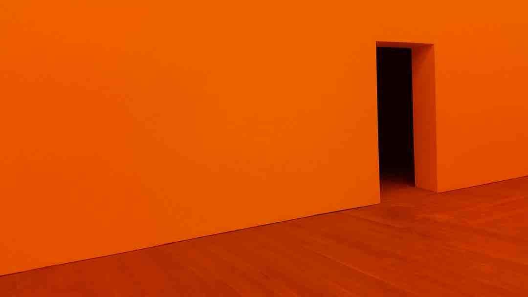 Erable du japon orange dream