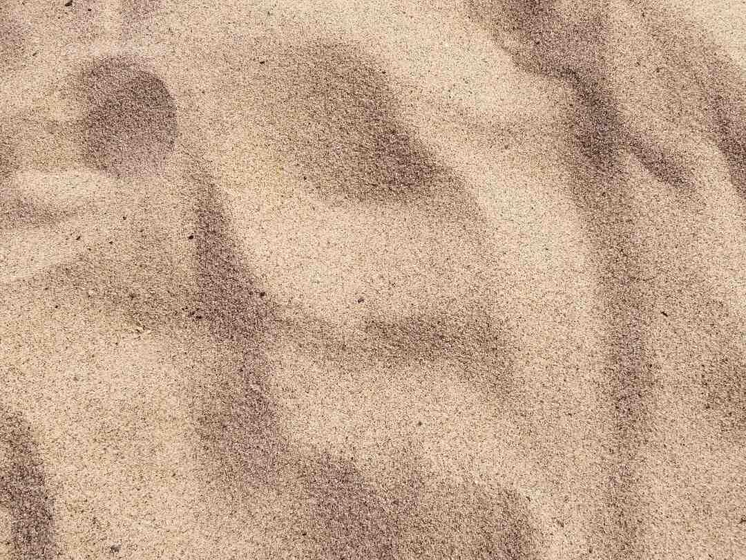 Comment faire pousser du gazon sur du sable ?