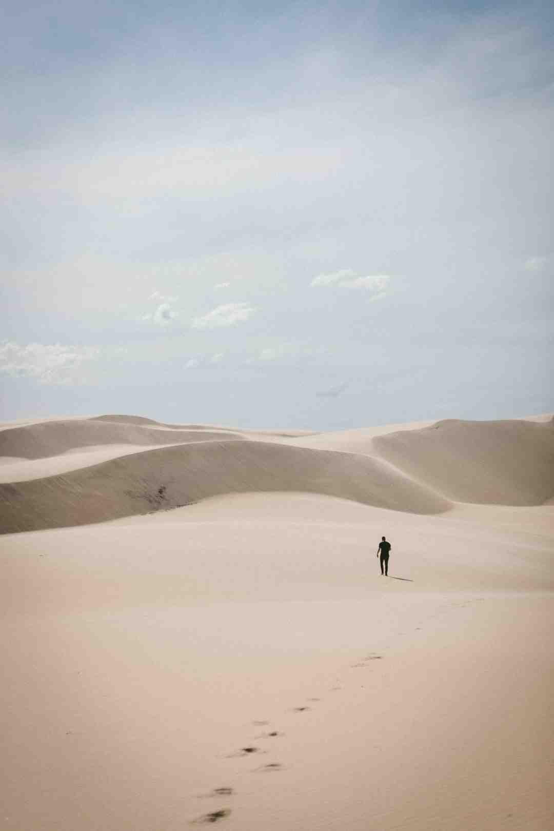 Pourquoi rien ne pousse dans le sable ?