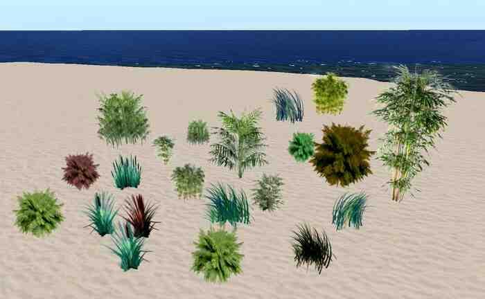 Quelle plante grimpante Plein Sud ?